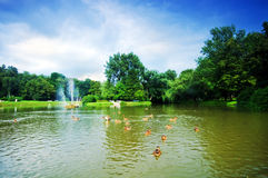 Charming park with pond Stock Image