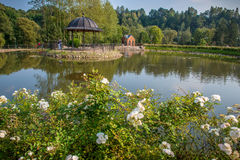 Charming park and pond Royalty Free Stock Image