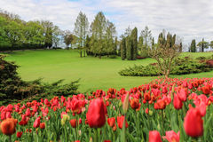 Charming park Sigurta in northern Italy Royalty Free Stock Photography