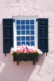 Charming pink building with window and black shutters and planter box in Charleston, South Carolna. Stock Image