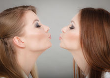 Charming positive female siblings. Royalty Free Stock Photos