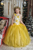 Charming princess girl in a yellow dress Royalty Free Stock Images