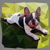 French bulldog smiles lying on grass in low poly style vector graphic stock illustration