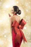 Charming sexy christmas female Stock Images