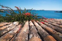 Charming shabby Mallorca roof tiles Stock Images
