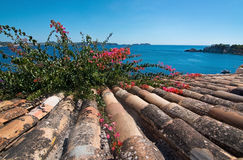Charming shabby Mallorca roof tiles Royalty Free Stock Images