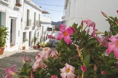 Charming street in Frigiliana Royalty Free Stock Photo