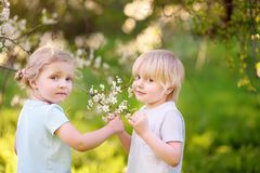 Charming toddler girl and little boy outdoors portrait in spring day stock images