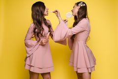 Charming twins eyes with lollipops and posing. Front view of charming twins in pink dresses closing eyes with lollipops and posing on isolated background. Two royalty free stock photo