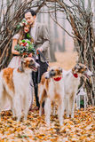 Charming wedding couple walking with dogs in the autumn forest Royalty Free Stock Image