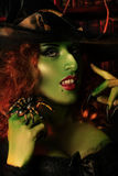 Charming witch Royalty Free Stock Photos