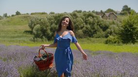 Charming woman with basket walking in floral glade. Charming smiling woman in stylish blue dress with picnic basket walking through fragrant lavender blossoms in stock video