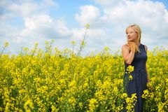Charming woman. At  field of canola Royalty Free Stock Images