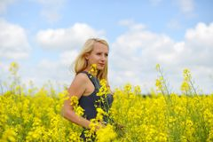 Charming woman. At  field of canola Royalty Free Stock Image