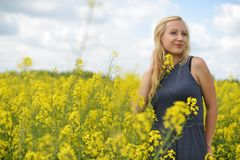 Charming woman. At  field of canola Stock Photography