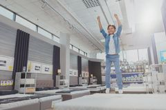 Charming young boy at the furniture store royalty free stock image