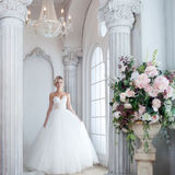 Charming young bride in luxurious wedding dress. Pretty girl, is near big window Stock Photos