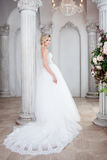 Charming young bride in luxurious wedding dress. Pretty girl, the photo Studio Royalty Free Stock Image