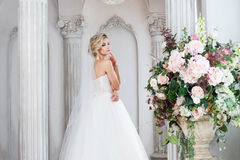 Charming young bride in luxurious wedding dress. Pretty girl, the photo Studio Stock Photos