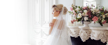 Charming young bride in luxurious wedding dress. Pretty girl, photo Studio. Charming young bride in luxurious wedding dress. Pretty girl, the photo Studio. Back Stock Photo