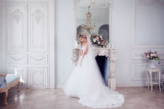 Charming young bride in luxurious wedding dress. Pretty girl, the photo Studio Stock Photography