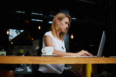 Charming young Caucasian woman work on portable laptop computer during coffee break in restaurant, Royalty Free Stock Photos