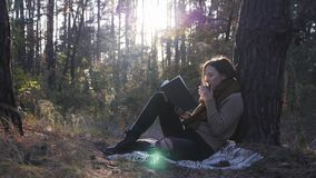 Charming young female tourist in cozy sweater, scarf and jeans sitting in fall forest, reading book, holding cup of tea and drinki. Ng in sun rays stock video