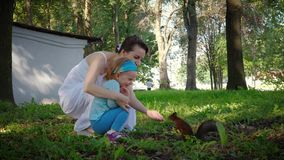 Charming young mother and cute daughter feed squirrel stock video