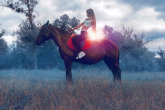 A charming young rider sits astride a horse Stock Photography