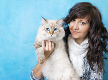 Charming young woman with Siberian cat. On blue background royalty free stock photo