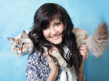 Charming young woman with Siberian cat. On blue background stock photography