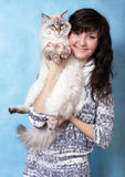 Charming young woman with Siberian cat Royalty Free Stock Image
