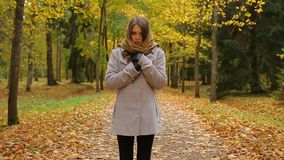 Charming young woman stands and shivers from cold in an autumn park. Beautiful girl stands in a picturesque autumn park, dressed in grey coat, black leggings stock video footage