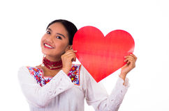 Charming young woman wearing traditional andean blouse with colorful embroideries, matching necklace and earrings Royalty Free Stock Photos