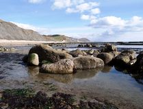Charmouth Beach Royalty Free Stock Photos