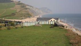 Charmouth beach and coast Dorset England UK stock footage