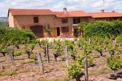 Charnay,rhone,france Royalty Free Stock Photography