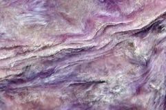 Charoite (加州、K, Na) 3个Si4O10 (OH, F) H2O 淡紫色罕见的水晶 库存图片