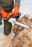 Charpentier travaillant à la scierie image libre de droits