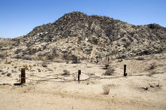 Charred California Desert Royalty Free Stock Images