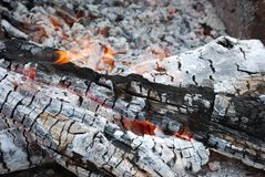 Charred in campfire Stock Images