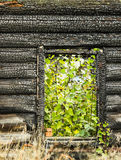 Charred house Stock Image