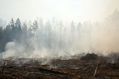 Charred landscape and smoke from a prescribed fire Stock Image