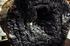 A charred log on the inside burnt. Black charred wood log interior burned in a forest fire, vertical aspect Royalty Free Stock Image
