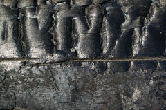 A charred piece of wood. Royalty Free Stock Photo