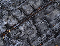A charred wood Royalty Free Stock Photos