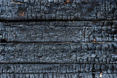 Charred wood Stock Image