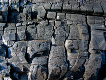 Charred wood texture Stock Images