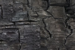 Charred wood texture Royalty Free Stock Images