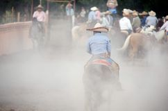 Charros Mexican horsemen in dusty arena, TX, US Stock Image